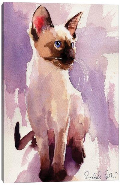 Siamese Sit With Lavender Canvas Art Print