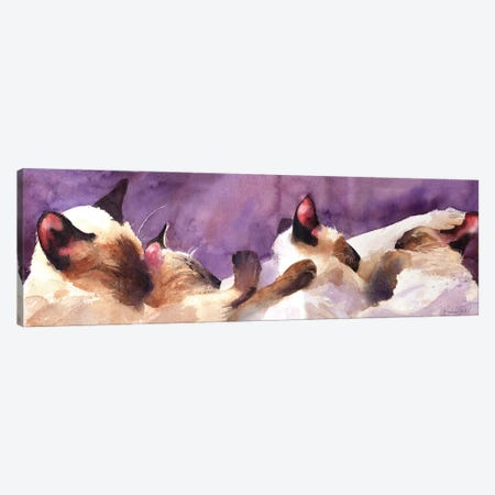 Siamese Strip Canvas Print #RPK22} by Rachel Parker Canvas Print