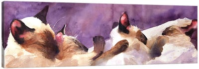 Siamese Strip Canvas Art Print
