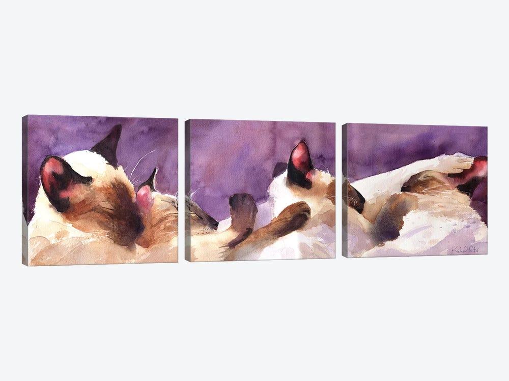 Siamese Strip by Rachel Parker 3-piece Canvas Artwork