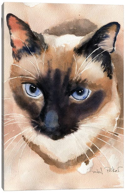 Soft Shades Canvas Art Print