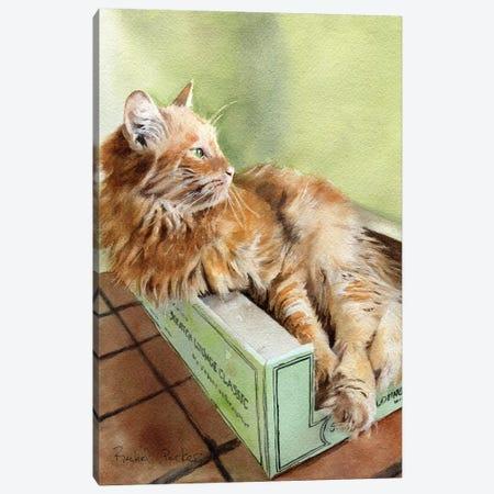 Tabby Green Canvas Print #RPK26} by Rachel Parker Canvas Art