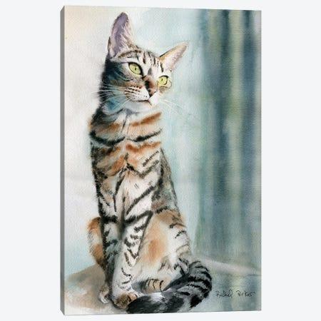 Tabby Lean Canvas Print #RPK27} by Rachel Parker Canvas Wall Art