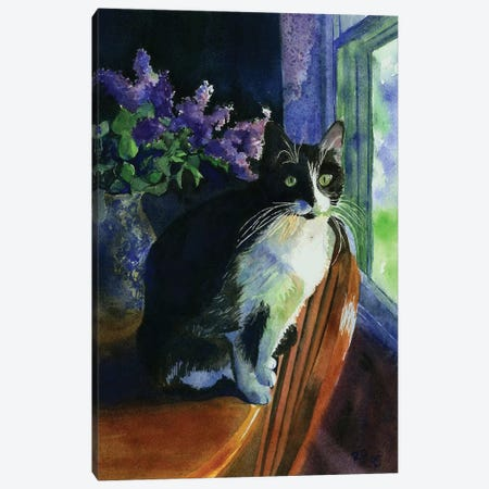 Tuxedo Garden Canvas Print #RPK30} by Rachel Parker Canvas Wall Art