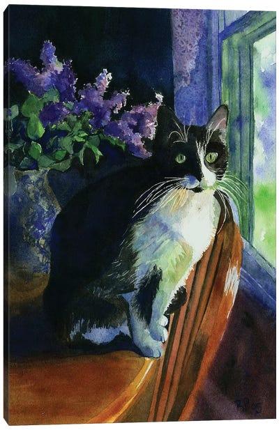 Tuxedo Garden Canvas Art Print