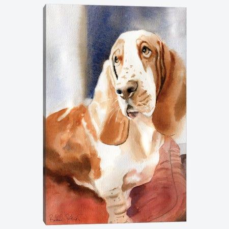 Basset Portrait Canvas Print #RPK34} by Rachel Parker Art Print