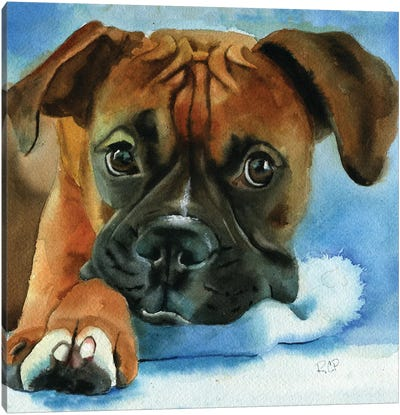 Boxer Baby Canvas Art Print