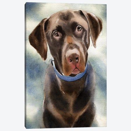 Chocolate Lab Portrait Canvas Print #RPK39} by Rachel Parker Canvas Artwork