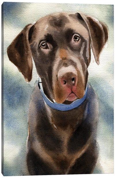 Chocolate Lab Portrait Canvas Art Print