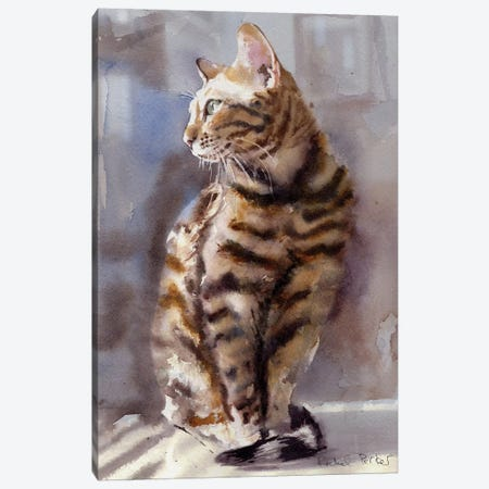 Bengal Light Canvas Print #RPK3} by Rachel Parker Canvas Art