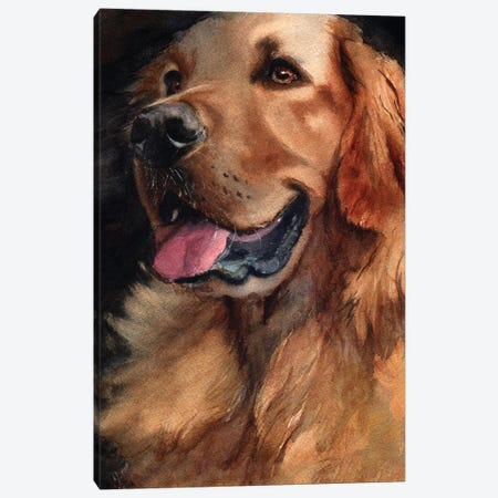 Golden Retriever Joy 3-Piece Canvas #RPK41} by Rachel Parker Canvas Print