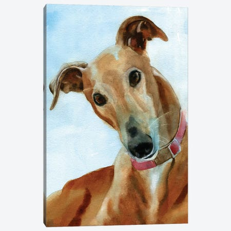 Greyhound Portrait Canvas Print #RPK44} by Rachel Parker Canvas Wall Art