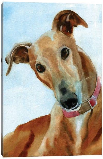 Greyhound Portrait Canvas Art Print