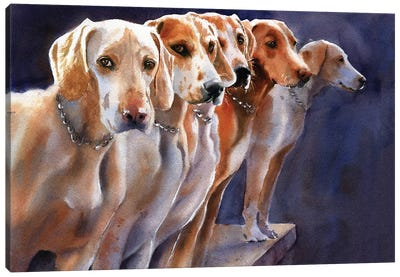 Penn Marydel Hounds Canvas Art Print