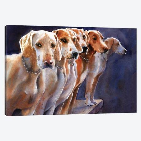 Penn Marydel Hounds Canvas Print #RPK48} by Rachel Parker Canvas Art Print