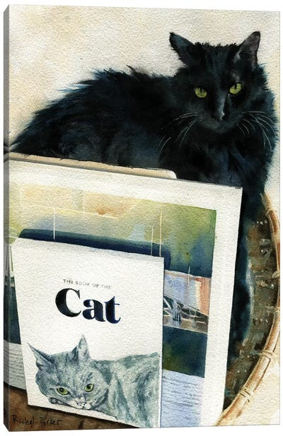 Black Cat Book Basket Canvas Art Print