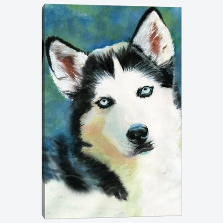 Siberian Husky Canvas Print #RPK50} by Rachel Parker Canvas Wall Art