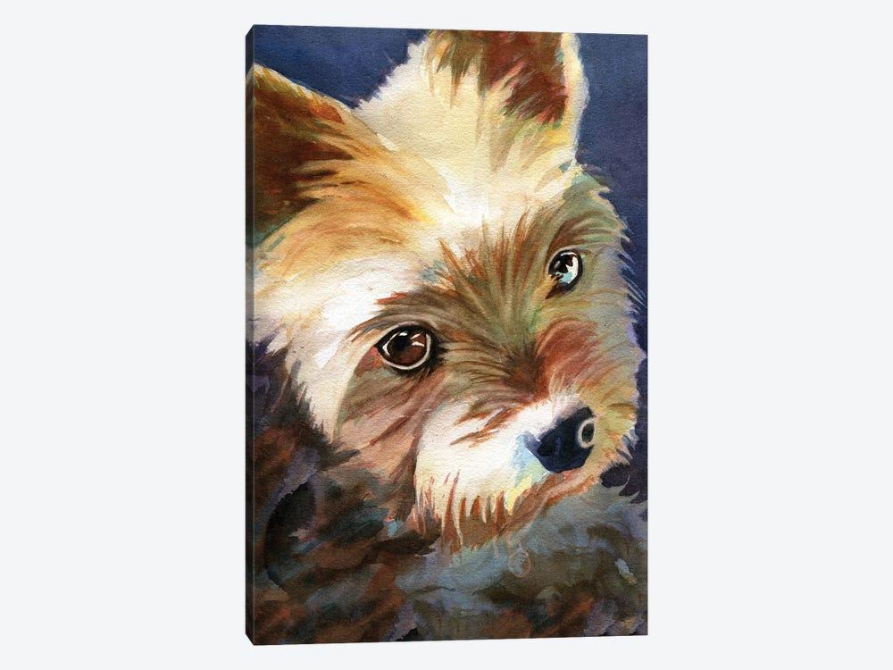 Yorky by Rachel Parker 1-piece Canvas Art Print