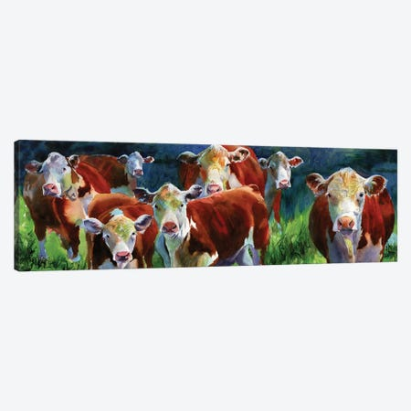 Curious Cows Canvas Print #RPK53} by Rachel Parker Canvas Wall Art