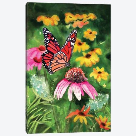 Cone Flowers Canvas Print #RPK58} by Rachel Parker Canvas Art