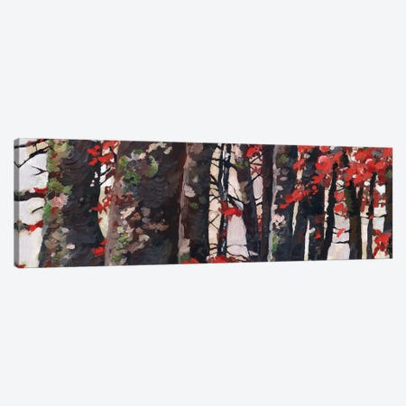Red Leaves Canvas Print #RPK62} by Rachel Parker Canvas Art Print