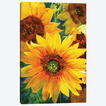 Sunflowers Canvas Print #RPK64} by Rachel Parker Canvas Wall Art
