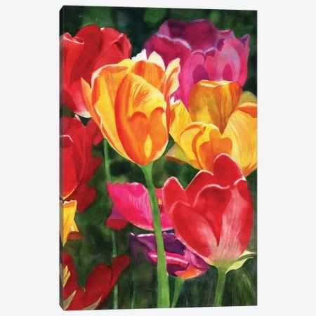 Tulips Canvas Print #RPK65} by Rachel Parker Canvas Artwork