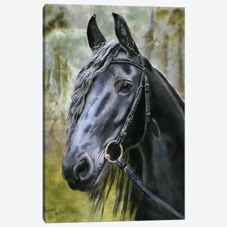 Friesian Forest Canvas Print #RPK69} by Rachel Parker Canvas Art Print