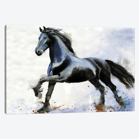 Friesian Forward Canvas Print #RPK70} by Rachel Parker Canvas Wall Art