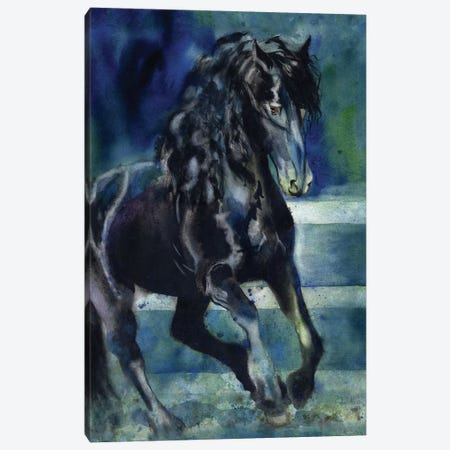 Friesian Gallop Canvas Print #RPK71} by Rachel Parker Canvas Art