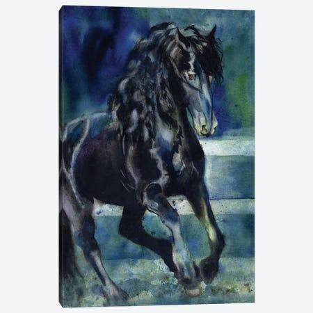 Friesian Gallop Canvas Print #RPK71} by Rachel Parker Canvas Art