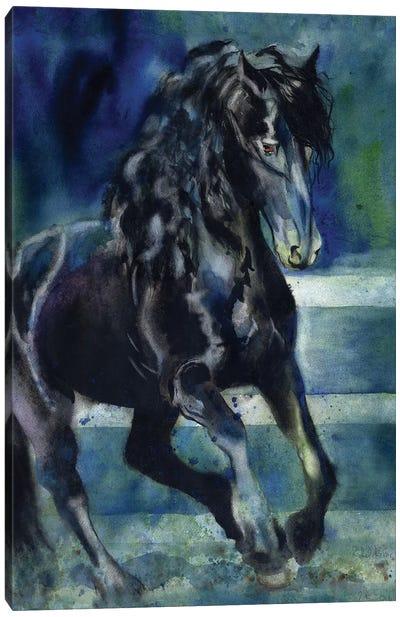 Friesian Gallop Canvas Art Print