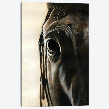 Horse Thoughts Canvas Print #RPK73} by Rachel Parker Canvas Artwork