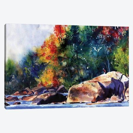 Saluda River Rocks Canvas Print #RPK89} by Rachel Parker Canvas Print