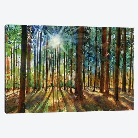 Lanscapes Karins Forest Canvas Print #RPK91} by Rachel Parker Canvas Art
