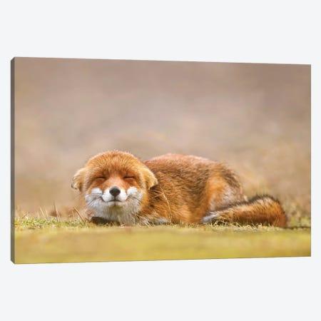 Happy Fox Is Happy I 3-Piece Canvas #RRA18} by Roeselien Raimond Art Print