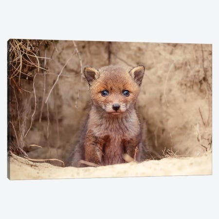 Hello World Canvas Print #RRA23} by Roeselien Raimond Canvas Artwork