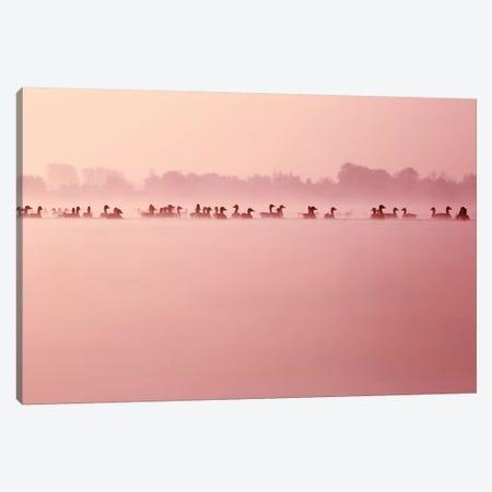 Serenity Canvas Print #RRA31} by Roeselien Raimond Art Print