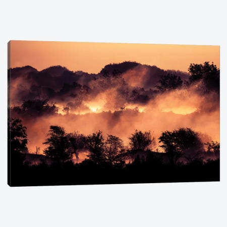 Steam Canvas Print #RRA36} by Roeselien Raimond Canvas Artwork