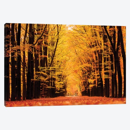 United Colors Of Autumn Canvas Print #RRA41} by Roeselien Raimond Canvas Wall Art