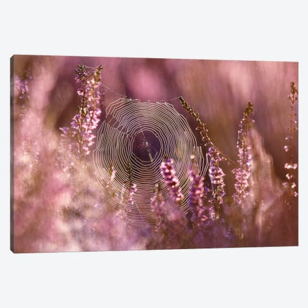 Dear Heather Canvas Print #RRA7} by Roeselien Raimond Canvas Print
