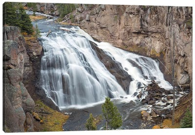Gibbon Falls at Yellowstone National Park, Wyoming Canvas Art Print