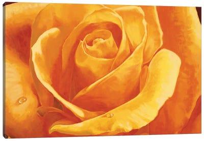 Gaiezza Canvas Art Print