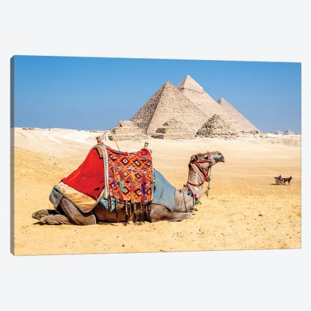 Camel Resting by the Pyramids, Giza, Egypt Canvas Print #RSI1} by Richard Silver Canvas Art Print