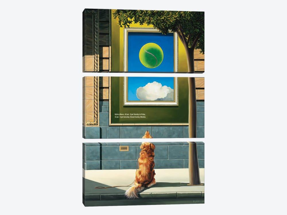 Fetch by Ross Jones 3-piece Canvas Print