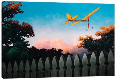 Final Flight Canvas Art Print