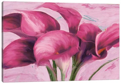Purple Callas Canvas Art Print