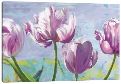 Lilac Tulips Canvas Art Print