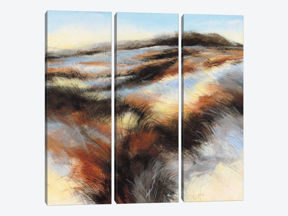 Dune I by D. Boersma 3-piece Canvas Artwork