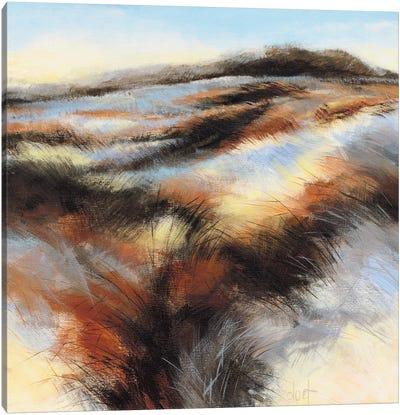 Dune I Canvas Art Print
